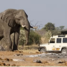 Landrover with Elephant